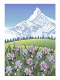 Iris Mountain Giclee Print by Linda Braucht