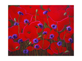 Poppies and Batchelor Buttons Giclee Print by John Newcomb