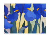 Faceted Irises Giclee Print by John Newcomb