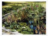 Pond Garden in Augusta Giclee Print by Helen J. Vaughn