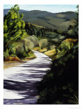 Country Road in Tuscany Giclee Print by Helen J. Vaughn