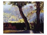 View from the Villa Giclée-Druck von Helen J. Vaughn