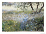 Field with Blue Flowers Giclee Print by Helen J. Vaughn
