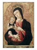 Madonna mit dem Kinde Giclée-Druck von Bartolomeo Vivarini