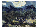 Olive Trees with the Alpilles in the Background Giclee Print by Vincent van Gogh