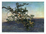 The Branch Giclee Print by Aleksandr Andreevich Ivanov