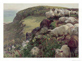 Our English Coasts Premium Giclee Print by William Holman Hunt