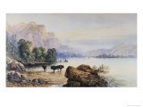 Buffalo Watering Giclee Print by Edward Moran