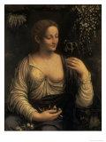 Flora, c.1520 Giclee Print by Francesco Melzi