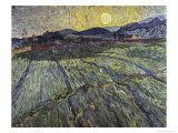Enclosed Field with Rising Sun Saint-Remy Giclee Print by Vincent van Gogh