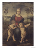 Madonna of the Goldfinch Giclee Print by  Raphael