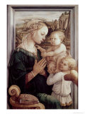 Madonna Del Granduca Giclee Print by  Raphael