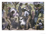 The First Cotton Gin Giclee Print by W. Sheppard