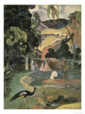 Matamoe Giclee Print by Paul Gauguin