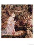 Madonna and Child with Angels Giclee Print by Filippino Lippi