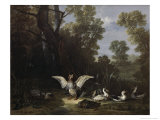 Ducks Giclee Print by Jean-Baptiste Oudry