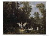 Ducks Giclee Print by Jean-Baptiste Oudry