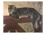 Cat on Balustrade Giclée-Druck von Théophile Alexandre Steinlen