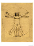 Proportions of the Human Figure Giclee Print by  Leonardo da Vinci