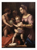 The Holy Family Giclee Print by Andrea del Sarto 