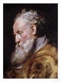 Saint Ambrose Giclee Print by Peter Paul Rubens