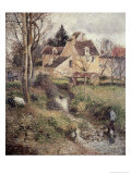 Stream at Osny Giclee Print by Camille Pissarro