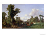 Wooded Landscape Giclee Print by Jean-François Millet