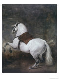 White Horse Gicléedruk van Diego Velázquez