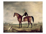 Young Gentleman in Grey Hat on Bay Hunter Giclee Print by Abraham Cooper