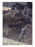 The Enemy Sowing Tares Giclee Print by James Tissot