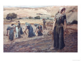 Ruth Gleaning Premium Giclee Print by James Tissot