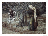 The Vine Dresser and the Fig Tree Giclee Print by James Tissot