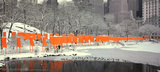 The Gates: Skyline im Schnee, Druck Collectable Print by Christo 