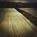 Freshly Groomed Land Photographic Print by Ewa Zauscinska