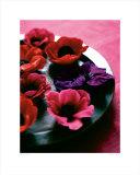 Alizarin Crimson I Print by Sandra Lane