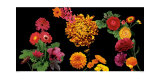 500 Flowers I Posters by Roger Camp