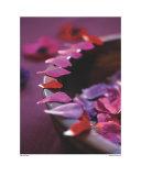 Alizarin Crimson III Posters by Sandra Lane
