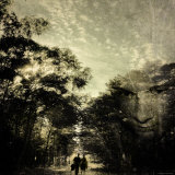 Pensive Walk through the Forest Photographic Print by Ewa Zauscinska