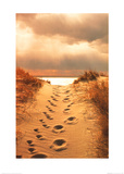 Footprints in the Sand Poster by Jane Vollers