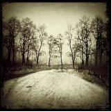 Tracks into Field Photographic Print by Ewa Zauscinska