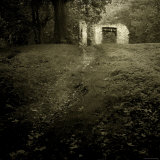 Path Leading to Ruins Photographic Print by Ewa Zauscinska