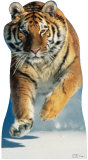Tiger Snow Cardboard Cutouts