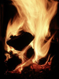 Close-up of Campfire at Night Photographic Print by John Coletti
