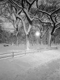 Snow Covered Promenade, Central Park Fotografisk tryk af Walter Bibikow