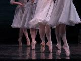 Ballet, Live Performance Fotografie-Druck von Keith Levit