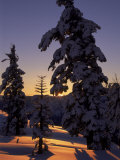 Sunrise Over Lake Tahoe, CA Photographic Print by Kyle Krause