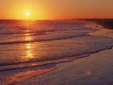 Kiawah Island, SC Fotografie-Druck von Robin Hill