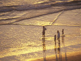 Family on Beach at Sunset Photographic Print by David Harrison
