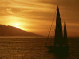 Sailboat at Sunset Photographic Print by William Swartz