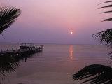 West End in Roatan, Bay Islands, Honduras Fotografisk tryk af Tom Stillo